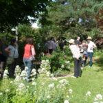 moment-de-plaisir-dans-le-jardin (1)